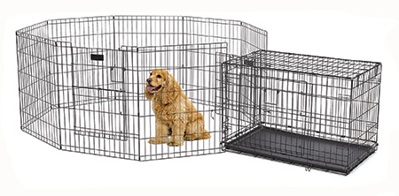 Marvelous ... Pet Secure And Safe Combine With Our ACE Crate For A Secure, Spacious  Space.